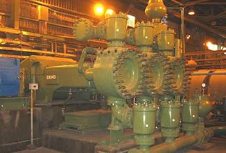 HCSD Pumps | Blue Star E&E